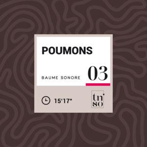 TNSO vignette Baume sonore 03 Poumons