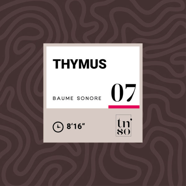 TNSO vignette Baume sonore 07 Thymus