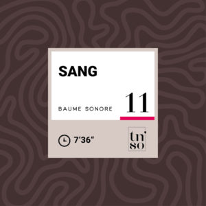 TNSO vignette Baume sonore 11 Sang