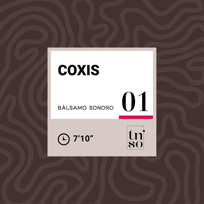 TNSO miniatura Bálsamo Sonoro 01 Coxis